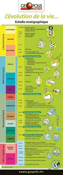Poster : Echelle des temps géologiques et de l'évolution de la vie
